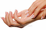"""Крем для рук успокаивающий, увлажняет и успокаивает кожу """"Ромашковая"""" Белита (Беларусь) 150 мл.RBA /98-43, фото 6"""