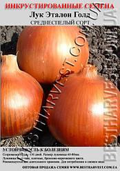 Насіння цибулі «Еталон Голд» 0.5 кг інкрустовані