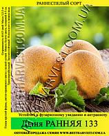 Семена дыни Ранняя 133 10 кг (мешок)