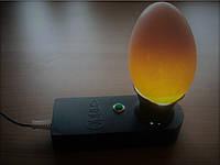 Овоскоп ОВ1-60-Д (диод, красный, Квочка)