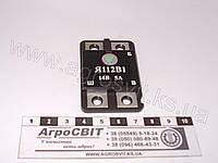Реле зарядки (интегральное) 14 V, Я-112-В1