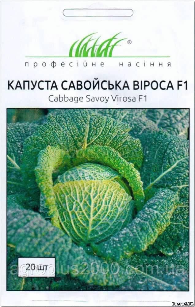 Семена Капуста савойская Вироса F1, 20 семян Bejo Zaden - Агроплюс2000 в Харькове