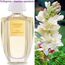 Тубероза - царица ароматов. клубни.