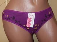 Трусики  хлопок р 46 М  фиолетовые   арт8921