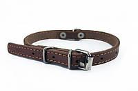 Ошейник для собак и кошек COLLAR 10мм/ 22-30см 00156, коричневый 00156