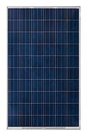 Солнечная батарея (панель) 260Вт, поликристаллическая RSM60-6-260P/4BB, Risen