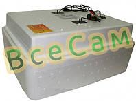 Инкубатор для яиц «Несушка» на 77 яиц с автоматическим переворотом (аналоговый терморегулятор)