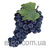 Ароматизатор Виноград