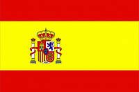 Профессионально переведем с/на испанский язык