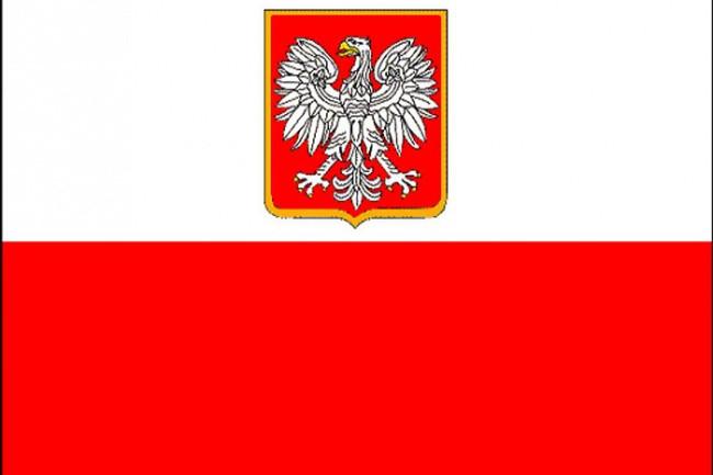 Premium перевод с польского и на польский язык