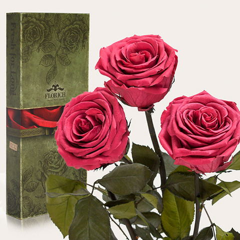 """Вечные розы Розовый коралл """"3 розы"""""""