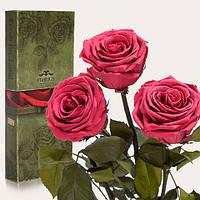 """Вечные розы Розовый коралл """"3 розы"""", фото 1"""