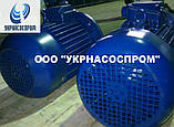 Электродвигатель 4АМ 250 M6 55 кВт 1000 об/мин, фото 2