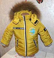 Зимний комбинезон + куртка для мальчика, термохоллофайбер, размеры 28, 30, 32, 34 натур. опушка