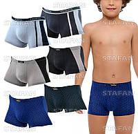 Детские трусы боксеры Veenice D029 9-12 L. В упаковке 6 штук