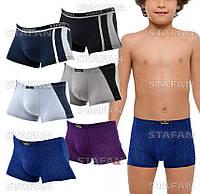 Детские трусы боксеры Veenice D025 9-12 L. В упаковке 6 штук
