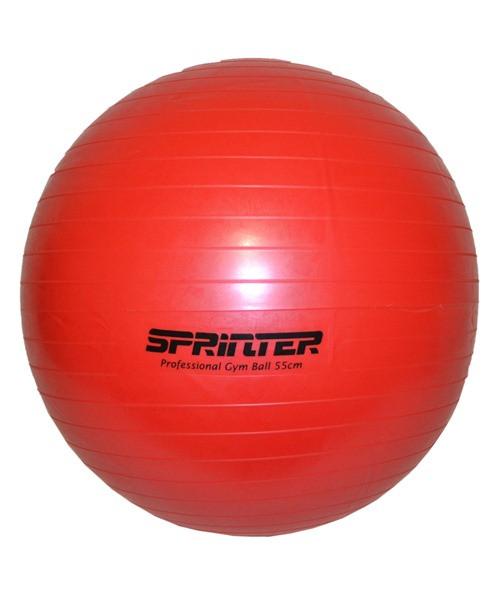 """Мяч для фитнеса """"GYM BALL"""" красный 50 см (700г)"""