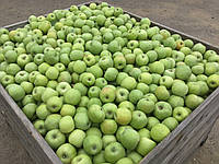 Яблука Симиренка