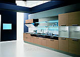 Кухня Aster Cucine Mod. Trendy Space, фото 4