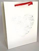 Подарочный пакет 23х18 (003)