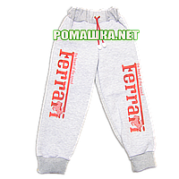 Детские спортивные штаны для мальчика р. 104-110 Ferrari с плотным начесом ткань ФУТЕР ТРЕХНИТКА 3283 Серый