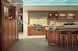Кухня Aster Cucine Mod. Palladio, фото 3