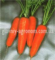 Семена морковь Курода Шантане (10 г упаковка)