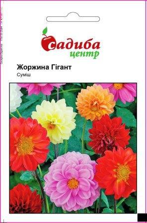 Семена Георгина Гигант, смесь 0,1 г СЦ