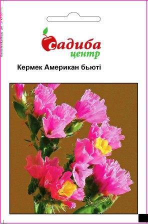 Семена Кермек Американ Бьюти, розовый 0,1 г СЦ