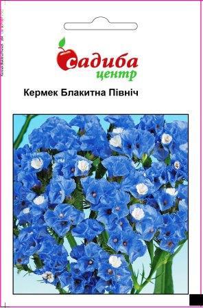 Семена Кермек Голубая Полночь, голубой 0,1г СЦ