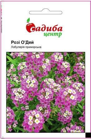 Семена Лобулярия приморская Рози О'Дей 0,1 г СЦ