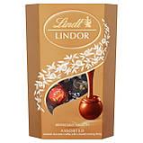 Шоколадные конфеты Lindt Lindor Cornet Assorted ассорти вкусов, 200 гр., фото 3