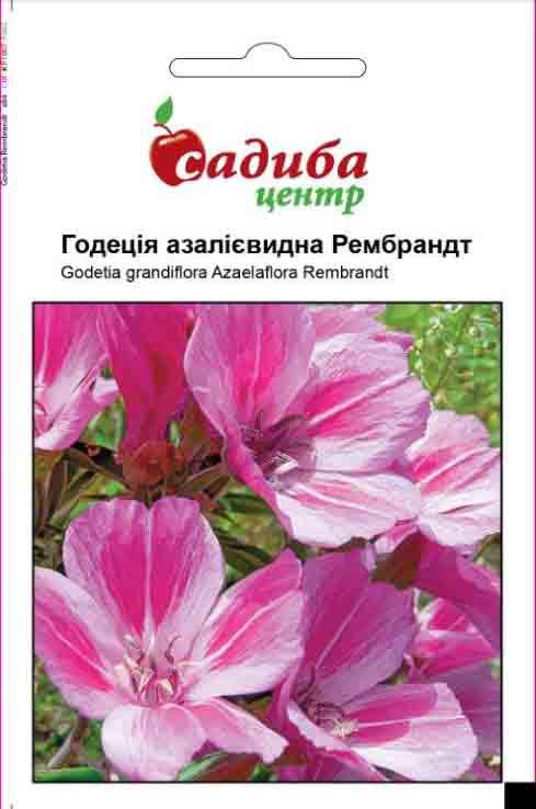 Семена Годеция азалиевидна Рембрандт, 0,2г СЦ