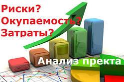 Рассчет доходности интернет проекта