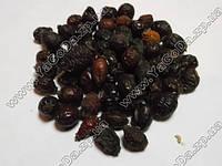 Шиповник плоды (Шиповник плоды)