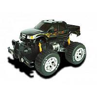Радиоуправляемый автомобиль Ford F-150 Big Wheel Car на пульте управления (1:14) ТМ XQ 3338