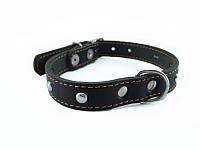 Ошейник для собак COLLAR одинарный с украшениями 20мм/32-40см 01351, чёрный