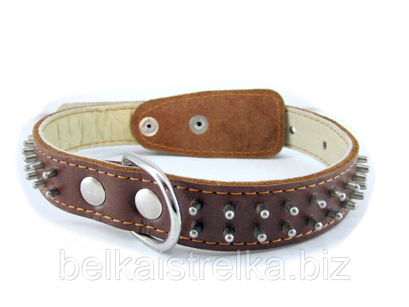 Ошейник для собак COLLAR двойной с шипами 25мм/ 50см коричневый 02336