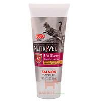 Uri-Ease витаминный комплекс для подкисления мочи кошек, гель (Нутри-Вет) Nutri-Vet
