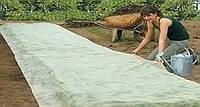 Агроволокно спандбонд, 42 г/м2, (2,1 х 10м)