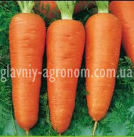 Семена морковь Кампино