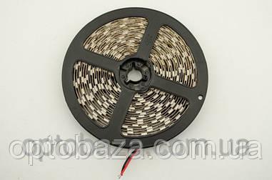 LED лента белый SMD 5050 60д/м, (5 м) герметичная