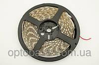 LED лента теплый белый SMD 5050 60д/м, (5 м) герметичная