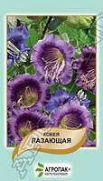 Семена Кобея лазающая фиолетовая 10 семян Агропак