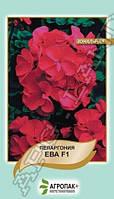Семена Пеларгония зональная Ева Красно-фиолетовая F1,  5 семян Cerny Агропак