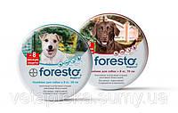Форесто Bayer (Германия) 70 см. ошейник для борьбы с эктопаразитами у собак.