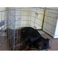 Клетка усиленная для собак серая две двери (107*74*85см) № 5