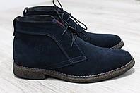Мужские Зимние ботинки в стиле Hilfiger  Цвет: синий,натуральная замша.