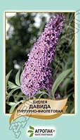 Семена Будлея Давида пурпурно-фиолетовая  0,01 грамма Агропак