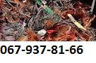 Куплю лом Медь за кг в Броварах 067-937-81-66 Сдать лом Меди в Броварах Цена за кг